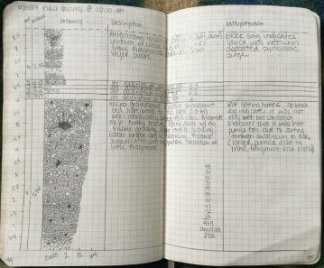 Figure 4. Fira Quarry Stratigraphic Column