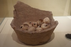Snails found in a pot excavated from Akrotiri (~1613 BC)